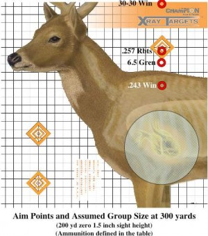 Aimpoints at 300 yards needed for several different cartridges when sighted in for 200 yards
