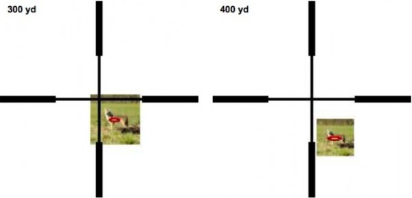 Figure 5. Sight picture needed to get center of impact on coyote vital zone at 300 and 400 yards when sighted-in on the mark at 100 yards. The red ellipse indicates where about half of the shots will hit with a 10 mph wind from the left and a wind-estimation error of 2 mph. Coyote picture credit: US Fish and Wildlife Service